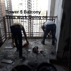 Tower 5 pic 3